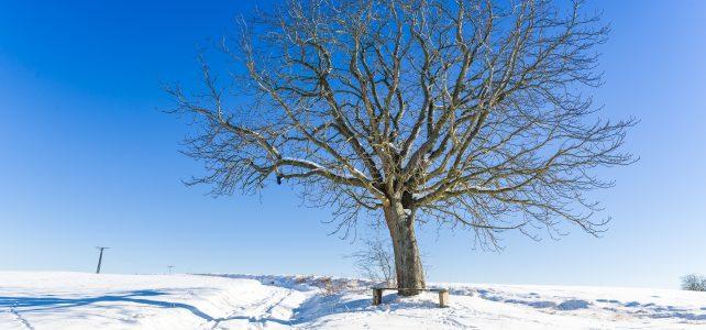 Bad Hindelang im verschneiten Allgäu